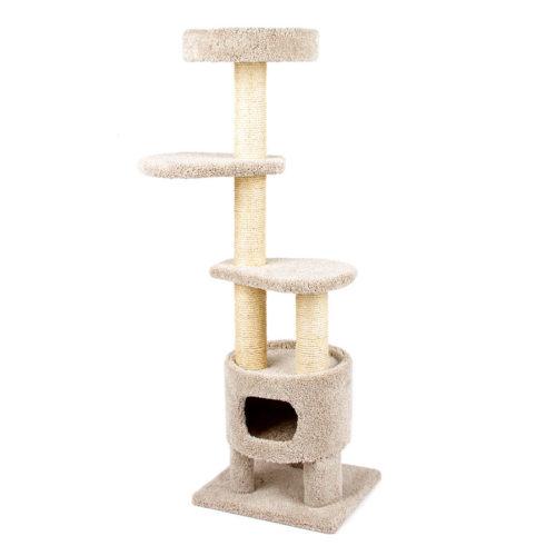 Cat Basement Treehouse