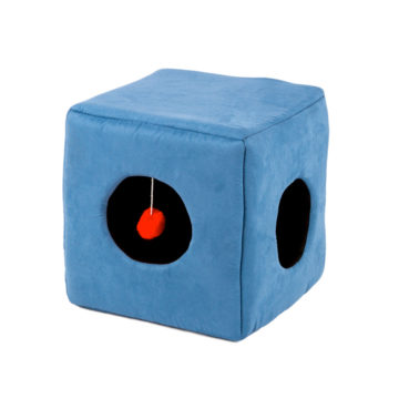 Kitty Cube - Casual Pet