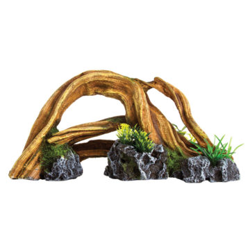 Wood with Plants