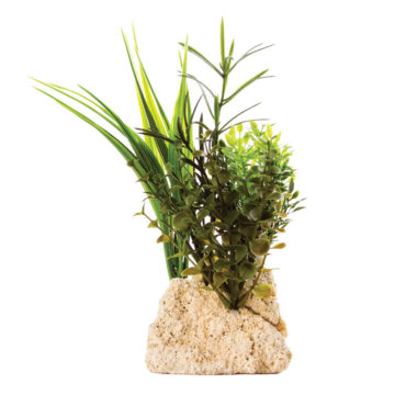 "Tufa Base with Plant 8""H"