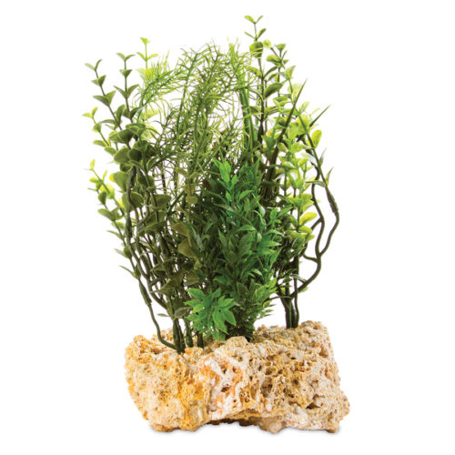 "Tufa Base with Plant 12""H"