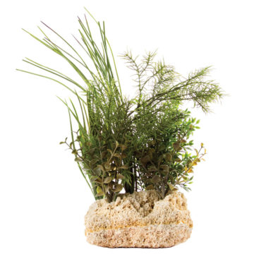 "Tufa Base with Plant 15""H"